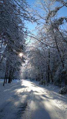 snowyroadsun